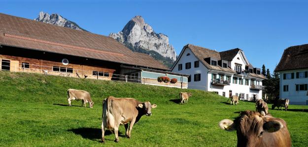 Hof Kappellmatt, Schwyz SZ